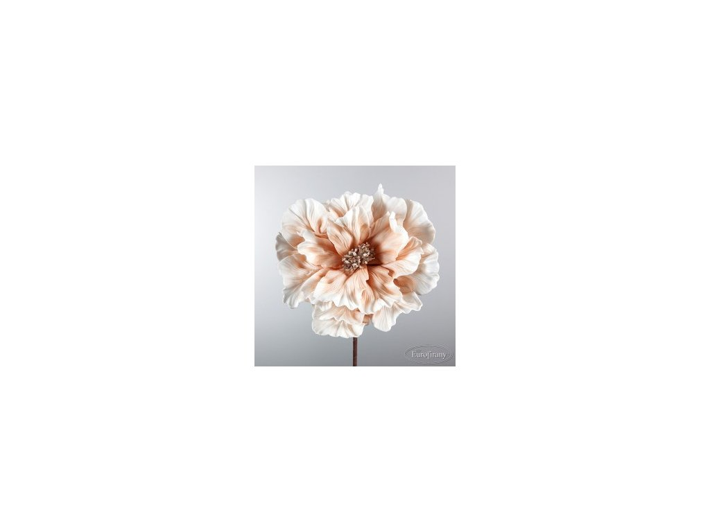 kwiat flore 164