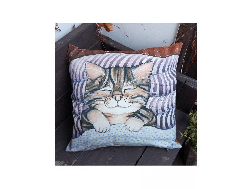 Batul aneb spalo štastné kotě - polštář bavlna