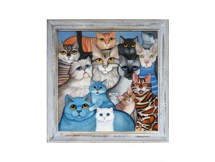 Skupinové foto - kočky