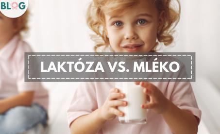Intolerance na laktózu není alergie na mléko