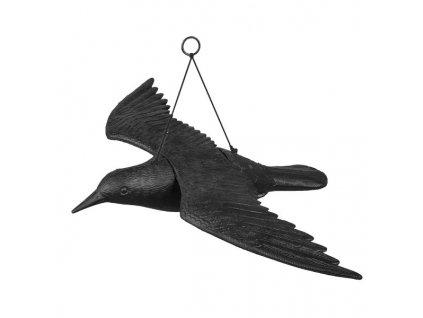 Bradas CTRL-BR102 Havran plastová 3D maketa na plašení ptáků
