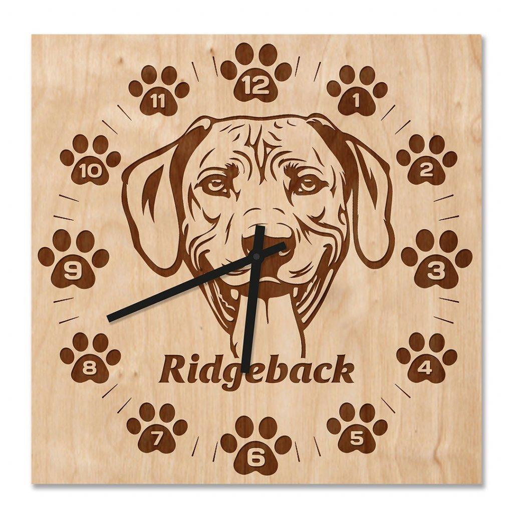 Nástěnné hodiny Ridgeback