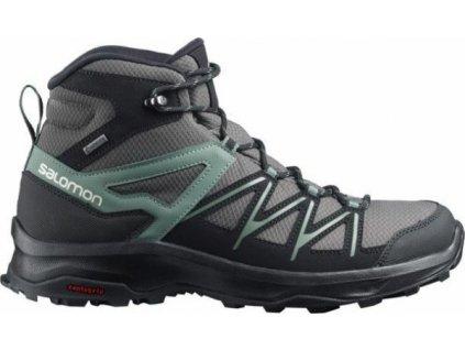 Pánská treková obuv Salomon Daintree Mid GTX 412312