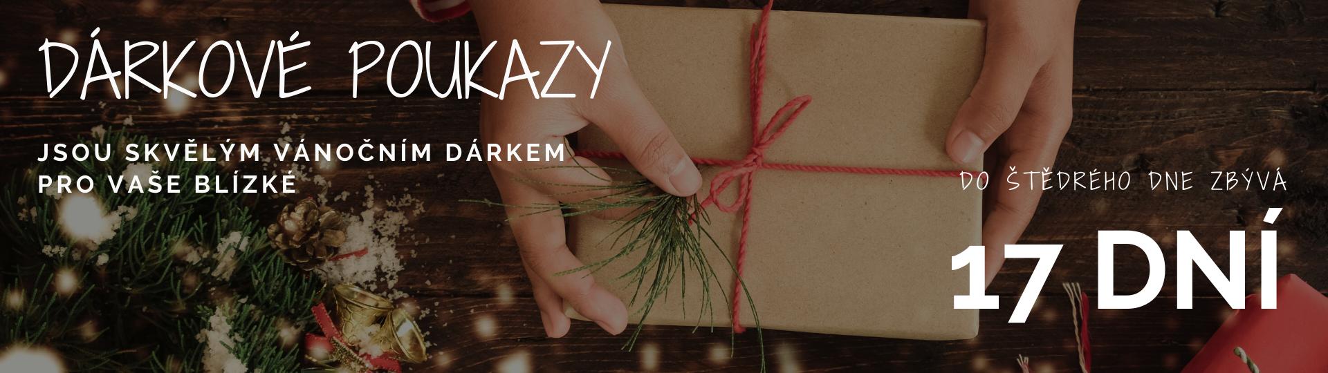 Vánoce dárkové poukazy 17