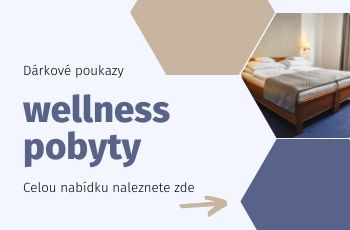 Wellness pobyty