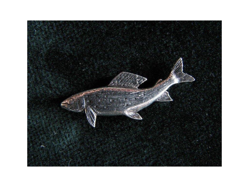 Rybářský odznak Lipan podhorní