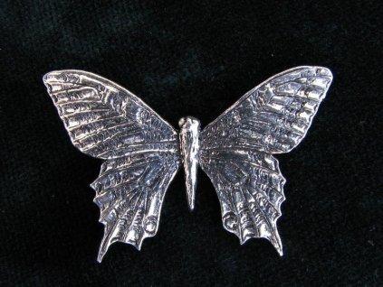 Cínový odznak Motýl