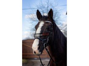 Uzdečka Horse4you crystal