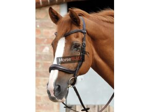 SS20 Lambro Anatomic Bridle with Crank Noseband Brown Main Image 72 RGB zoom