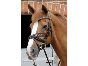 SS19 Stellazzio Anatomic Snaffle Bridle with Flash Brown Main Image RGB 72 z