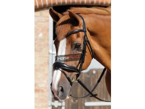 SS19 Rizzo Anatomic Snaffle Bridle with Flash Black Close Up Full Bridle RGB