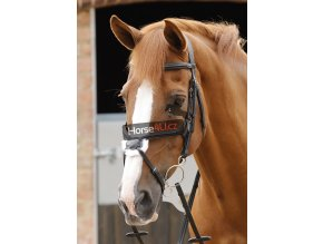 6 Glorioso Grackle Bridle Black Webx900