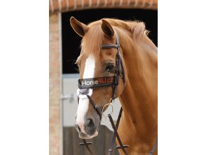 7 Glorioso Grackle Bridle Path Brown Webx900