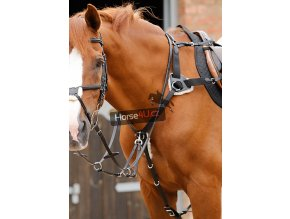 Invorio 5 Point Breastplate RGBx900