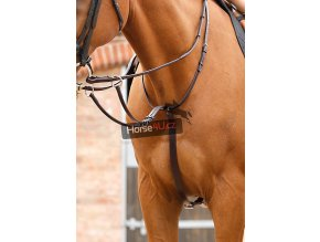 Santadi Adjustable Running Martingale RGBx900