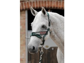 SS19 Padded Fleece Head Collar Green Main Image RGB 72 zoom