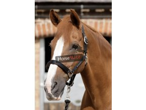 SS19 Plain Padded Head Collar Black Main Image RGB 72 zoom