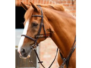 Mossimo Cavesson Bridle Brown 1 768x
