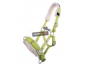 Lonžovací obnosek QHP Lime