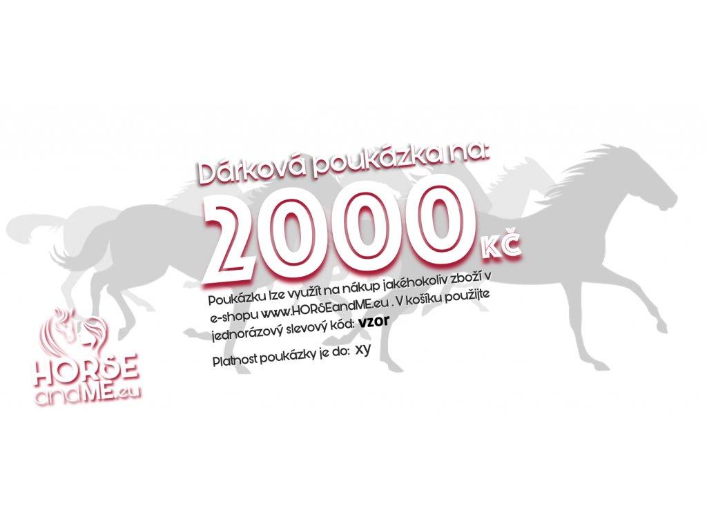 pouk 2000