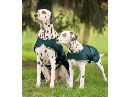 Pláštěnka pro psy Waldhausen, fir green