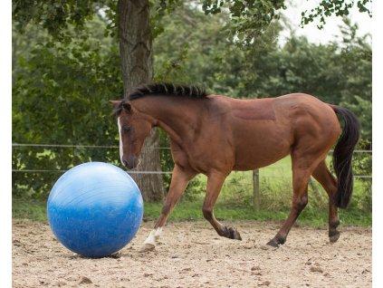 Hrací míč pro koně QHP, blue