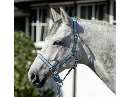 Ohlávka USG, light blue/grey