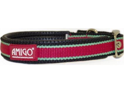 Obojek pro psy Amigo, red/white/green/black