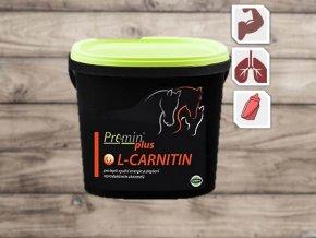 L Carnitin