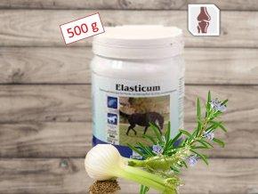 Derby Elasticum