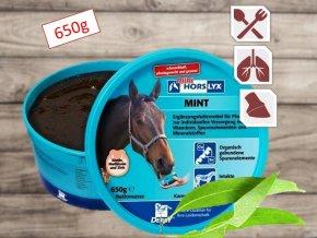 Derby HORSLYX Mint