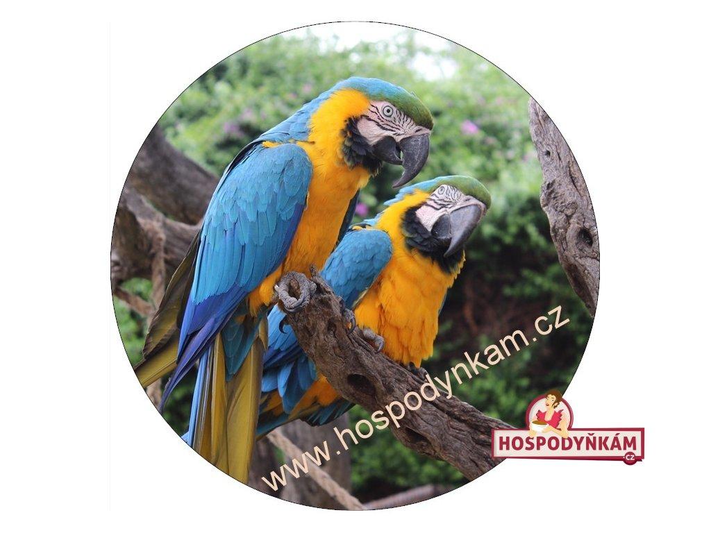 Jedlý papír papouškové