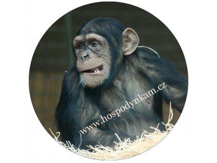 Jedlý papír opice