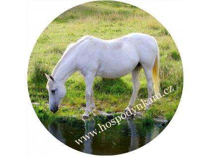 Jedlý papír kůň u vody