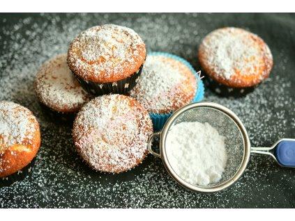 Nevlhnoucí cukr moučkový 350g