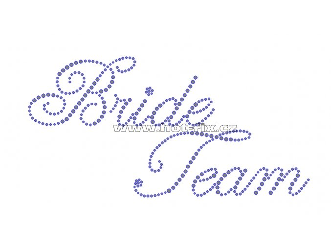 SVAT015-B - Bride Team nažehlovací kamínkový potisk pro družičky a kamarádky nevěsty, rozm. cca 20,8x10,4cm