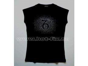 10 Kozoroh tričko znamení zvěrokruhu, znamení Kozoroh hot fix kamínky rozptyl