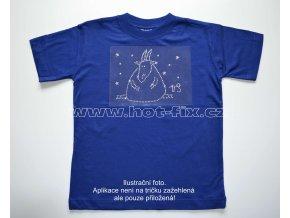 10 Kozoroh dětské tričko s hot fix kamínky znamení zvěrokruhu Kozoroh