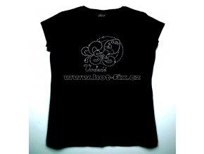11 Vodnář dámské tričko s hot fix kamínky znamení zvěrokruhu Vodnář