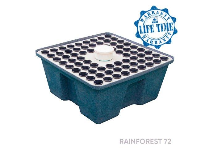 rainforest72 2017