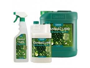 cultivo de marihuana riego fertilizantes canna cure
