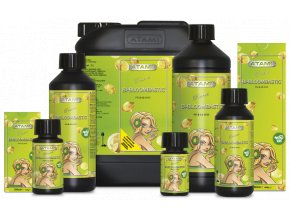 ATA NRG Bi bloombastic 100ml