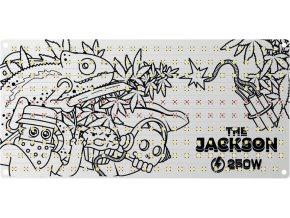 thejackson250