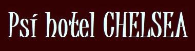 Psí hotel Chelsea
