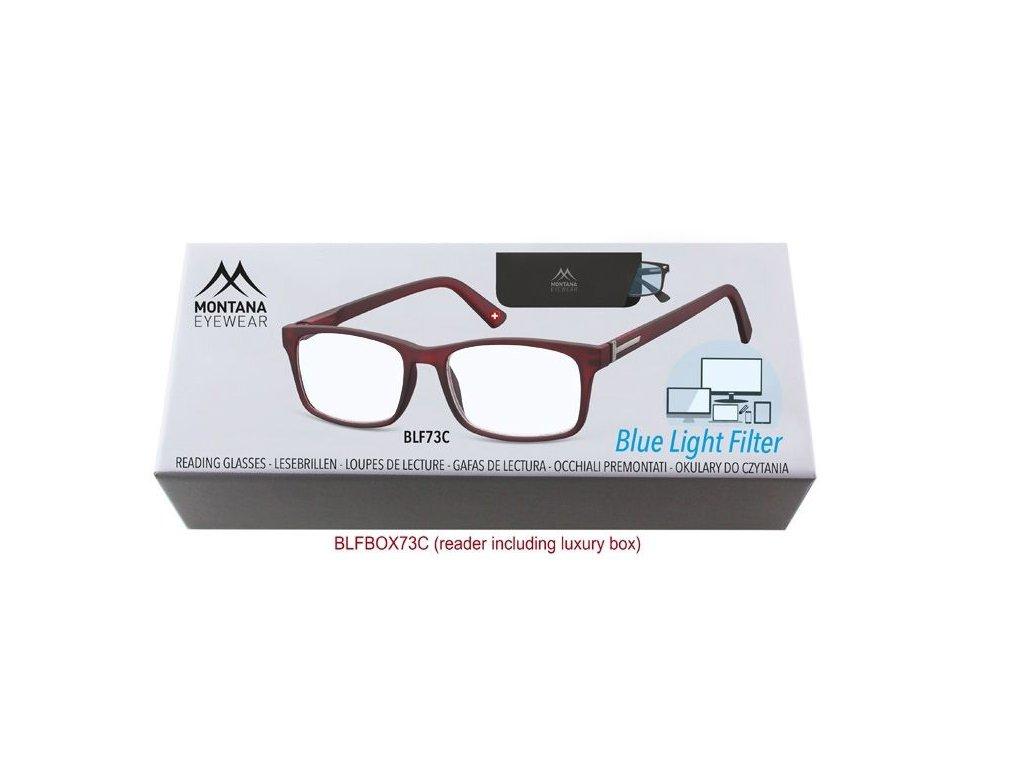 MONTANA EYEWEAR Brýle na počítač BLF BOX 73C bez dioptrií