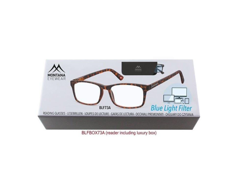 MONTANA EYEWEAR Brýle na počítač BLF BOX 73A s dioptrií +2,50