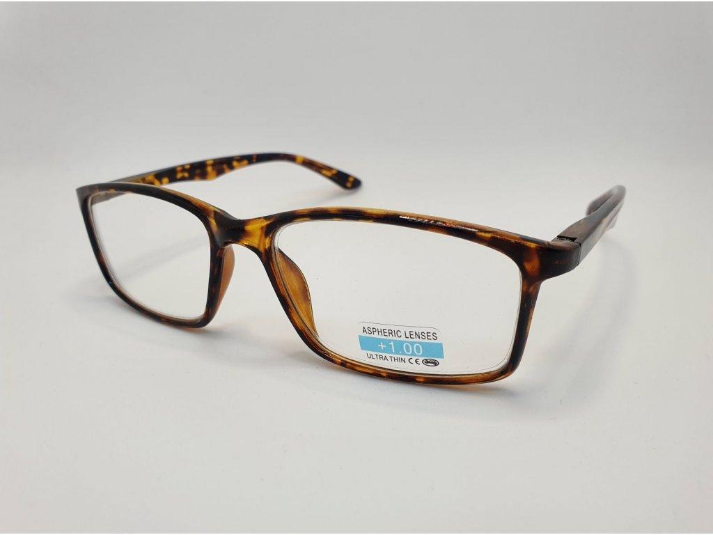 Dioptrické brýle P2.02/ +3,00 brown