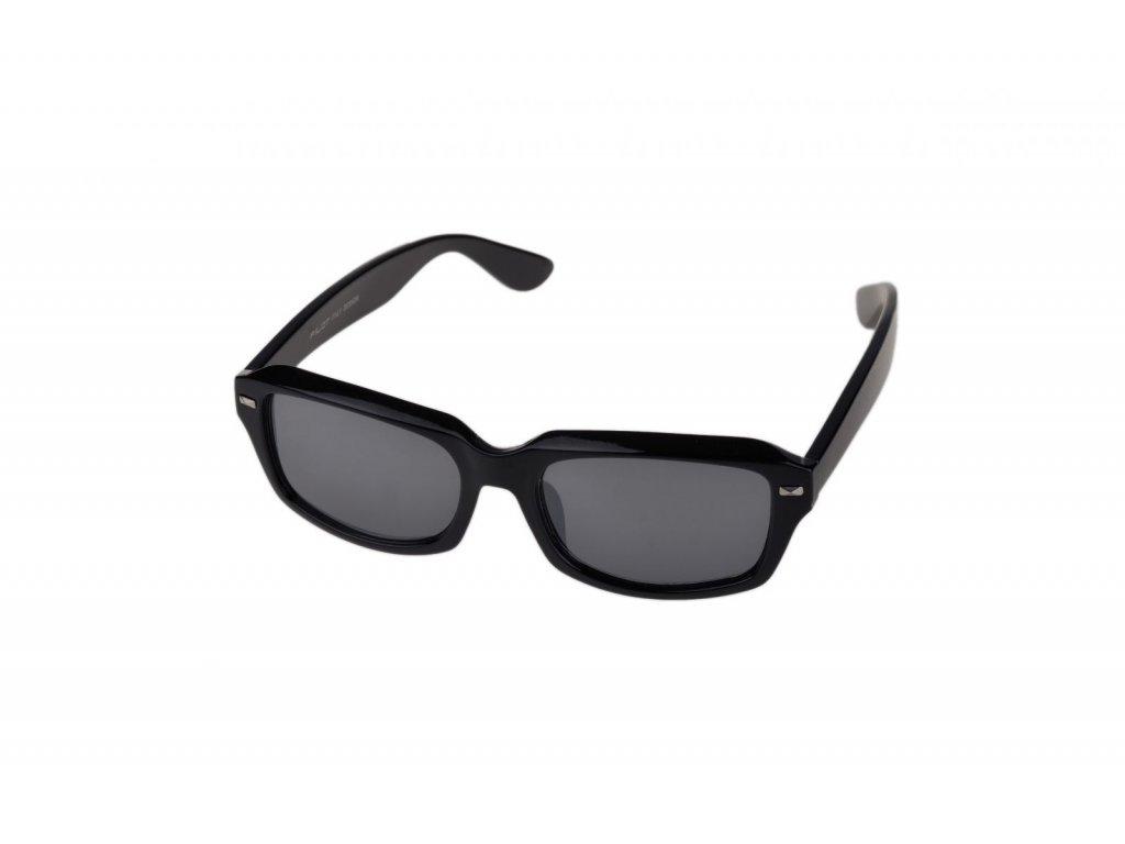 PILOT Sluneční brýle PS201110 CAT.3