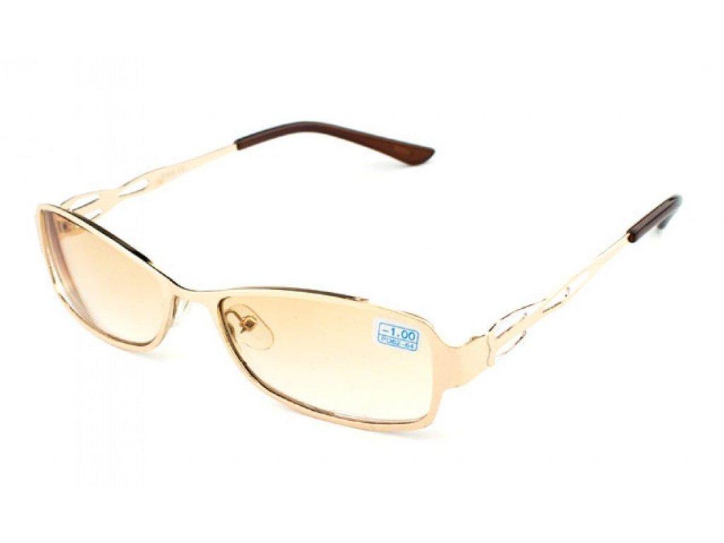 Dioptrické brýle Vista 127-2  +2,50 kovové obroučky
