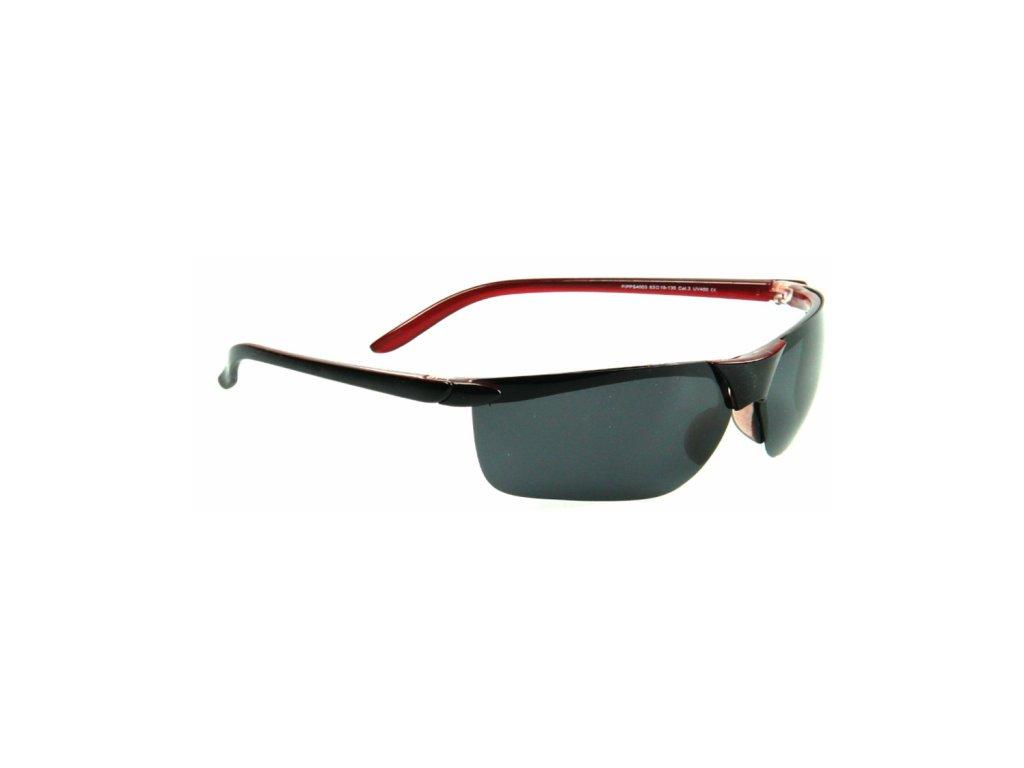 Polarizační brýle WITHGO 4003 šedomodré čočky Cat.3